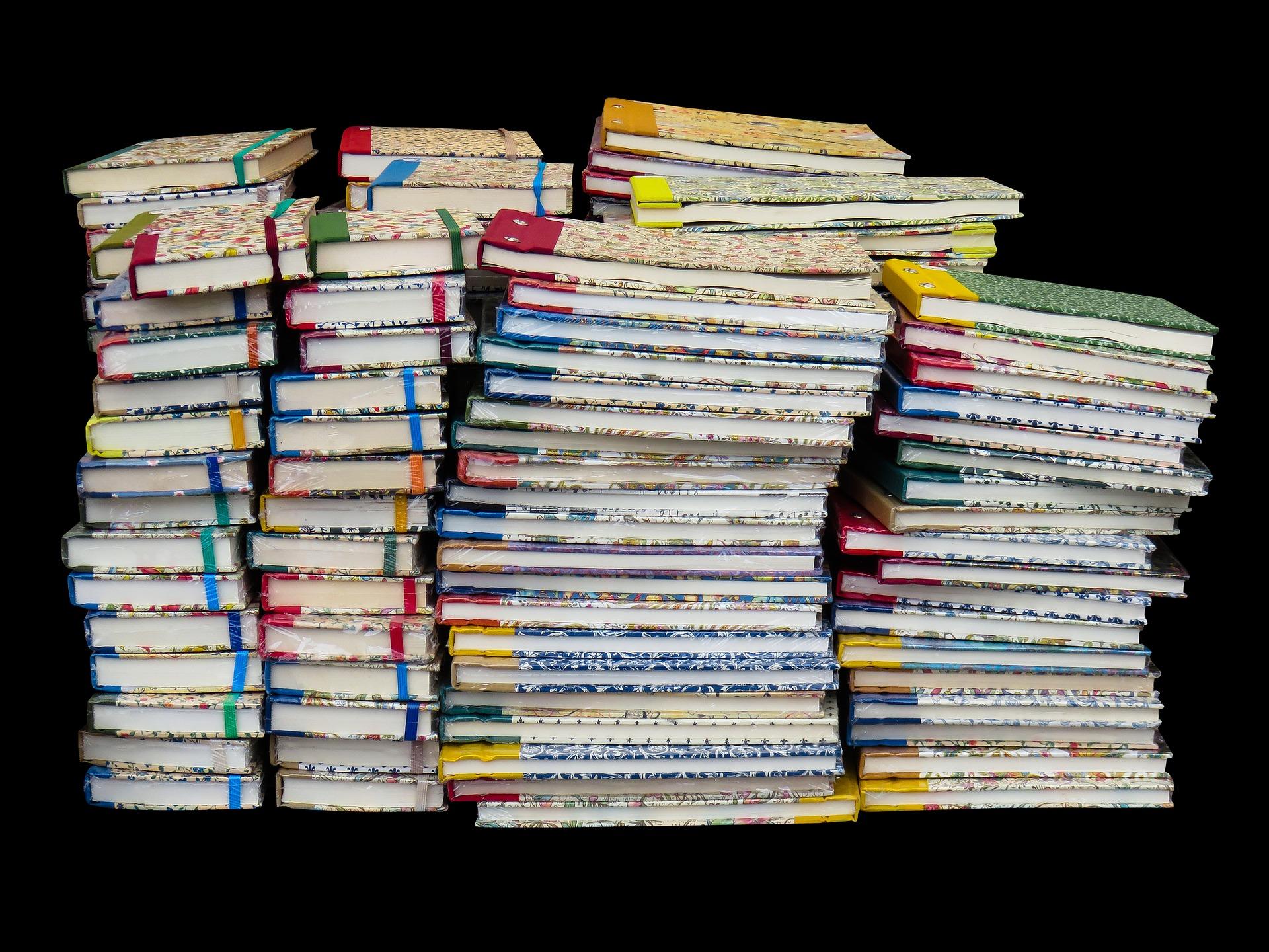 Ayudas de libros y banco de libros – Releo Plus (SUBSANACIÓN DE ERRORES)